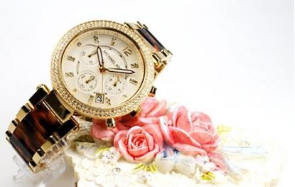 Picture of Aquarian New producT Woman's MICHAEL KORS Watch