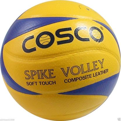 """Picture of COSCO """"SPIKE"""" PREMIUM PLAYER VOLLEY BALL SIZE-4"""