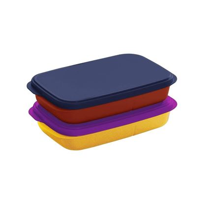Picture of  Click to open expanded view       Tupperware Plastic My Lunch Liquid-Tight Lunch Box 590ml 2pc (Multicolour)
